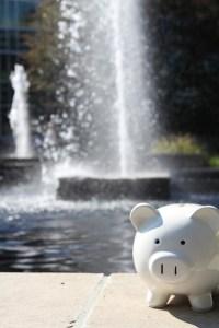 FSA Piggy Bank