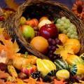Energetics of Food: Pumpkin, Creativity, & Clarity