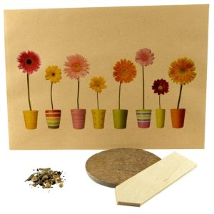 Promotional Flower Mixture and Wooden Label