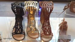 the Showroom: Seychelles and More