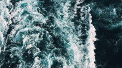 PVH Corp., Water Stewardship, WWF
