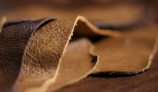 Applied DNA Enables Fully Traceable DNA-Tagged Leather Supply Chain at Asian Tannery
