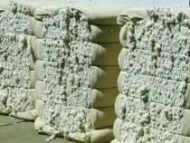 Cotton Prices Edge Up In June