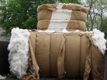 Cotton Prices Plunge to Lowest Level Since 2009 as Global Supply Crushes Demand