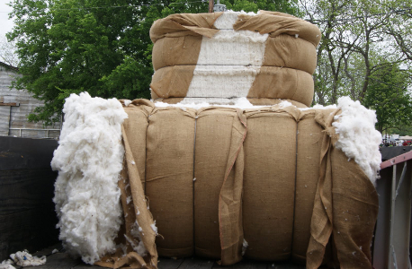 060_cotton_bales_in_back_of_truck