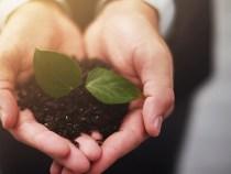 Promoting Sustainability Could More Than Double Product Sales