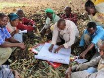 Ethiopia Creates First Certified Organic CottonProgram