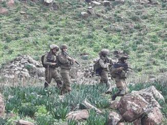 عناصر من قوات العدو تُجري مسحًا في بلدة ميس الجبل..
