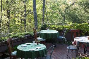Tables set for dining outside surrounded by forest