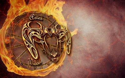 Le Zodiaque, les 4 éléments et les H.essentielles !