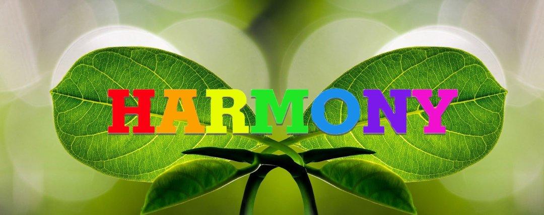 Une santé en harmonie