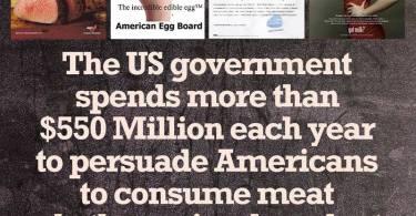 אנחנו מוקפים כל הזמן בתעמולה תזונתית. משום מה רק זו הטבעונית מוציאה אנשים משלוותם.