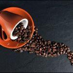 コーヒー豆や粉は冷蔵庫で保存したらダメなの?