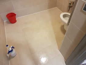 Commerical Porcelain Toilet floor Milton Keynes Before Cleaning