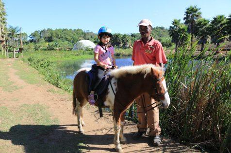 Mac Adv Pony Rides
