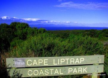Cape-Liptrap-Coastal-Park (1)