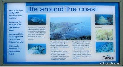 Cape-Liptrap-Coastal-Park (3)