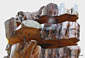 Celia-Rosser-Art-Gallery (11)