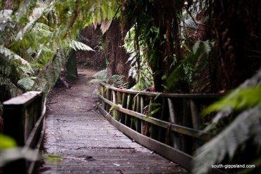 Mount-Worth-State-Park (143)