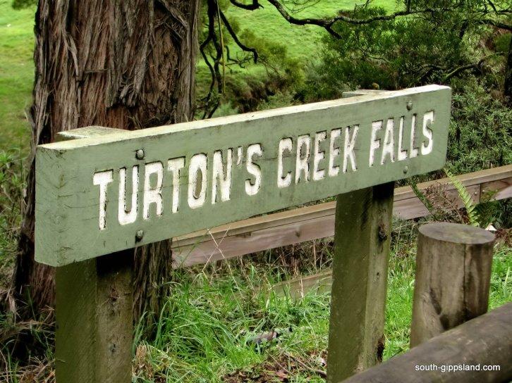 Turtons-Creek-Reserve (1)