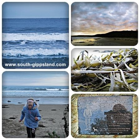 pictures of Waratah Bay beach, sunset, sea grass and the memorial to Charlie Brown