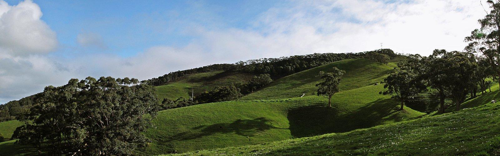 Mount Nicoll
