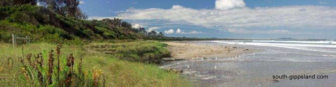waratah-bay-beach-panorama