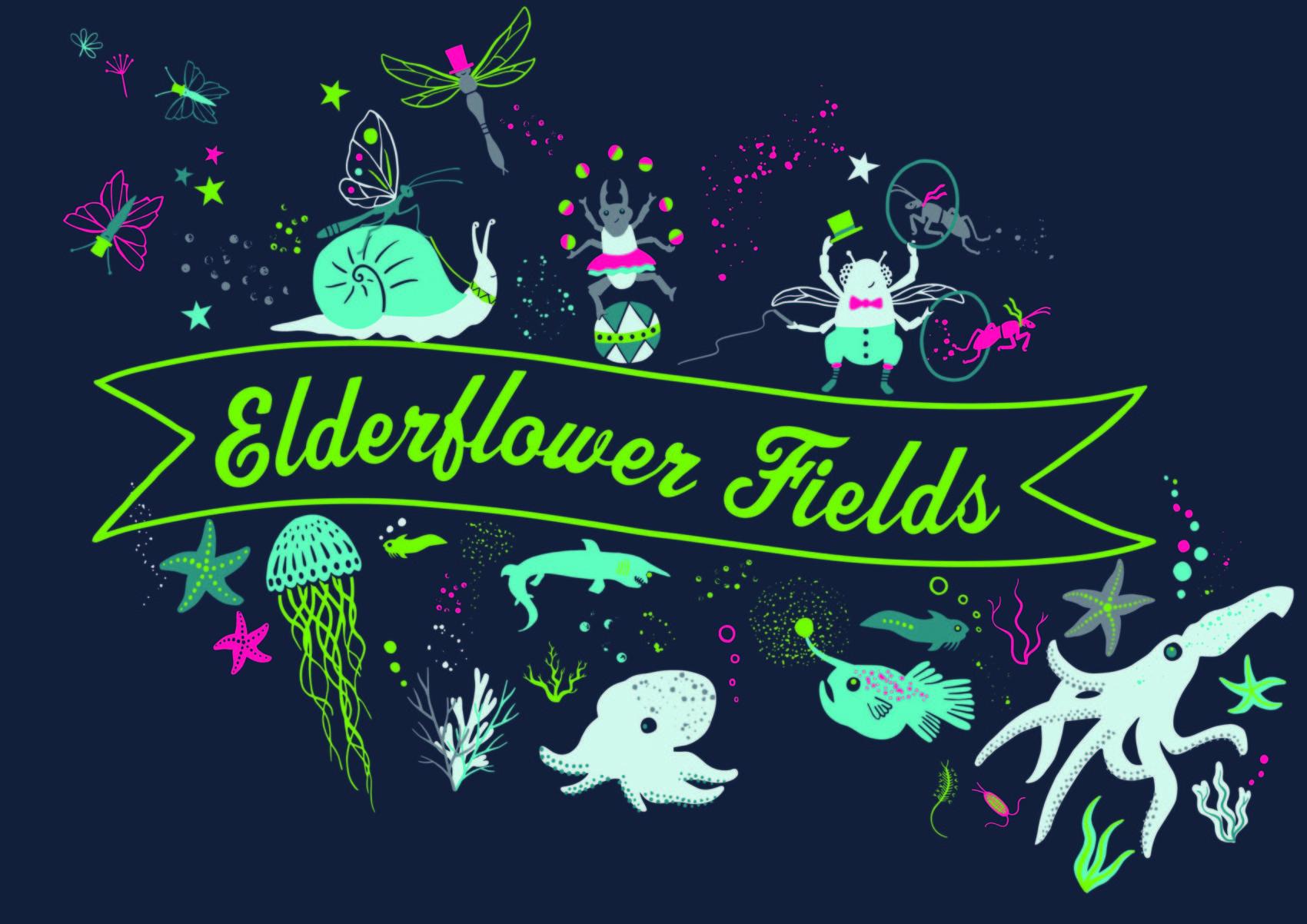 Elderflower T-shirt 2019