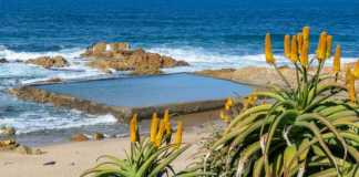 Ugu South Coast Tourism (USCT) calls on KZN South Coast to support local eateries during adjusted Alert Level 4