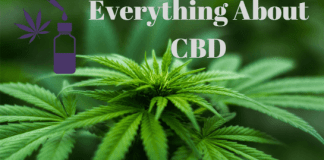 All You Need To Know About CBD Oil