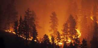 How to Improve Indoor Air Quality from Wildfire Smoke during Covid-19