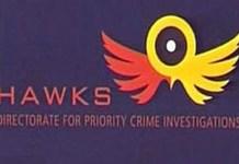 Hawks nab illegal gambling operators, Keimoes