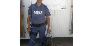 K9 'Sem' shows off his swimming skills, arrests murderer, Pampierstad. Photo: SAPS
