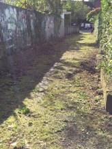 cleared-laneway-in-stranmillis