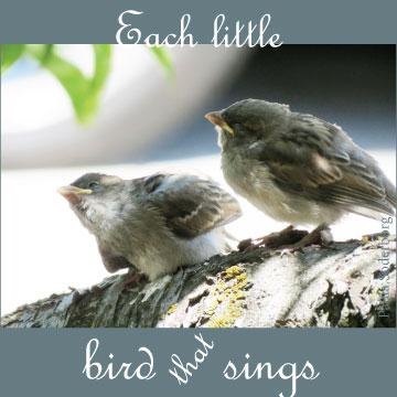 BirdThatSings