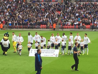 Team Swansea
