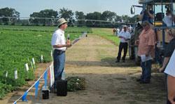Dr. Barry Tillman, NFREC Peanut Breeder, will share results on newer peanut varieties. Photo credit: Doug Mayo