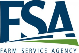 fsa county committee elections