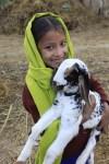 Rapti Women Empowerment Project by Heifer International