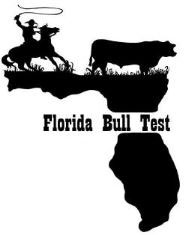 fl-bull-test