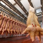 pork carcasses hanging on hooks in a meat factory-3