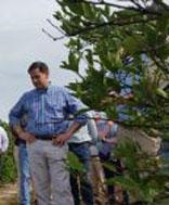 Marco Rubio touring a Florida citrus grove
