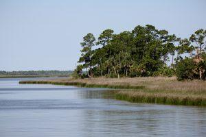 Apalachicola Bay water wars dunn