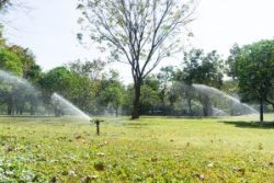 automatic-garden-lawn-sprinkler-in-action-watering-grass