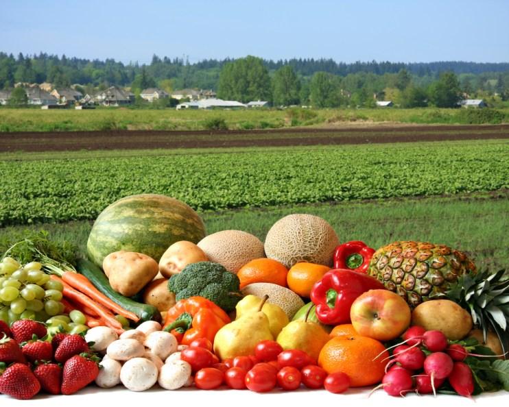Produce Safety Alliance