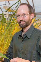 ARS geneticist Ed Buckler is using a large-scale genomic approach to link genes with a crop's physical traits to make the most of a plant's natural genetic diversity. Photo credit Cornell University.