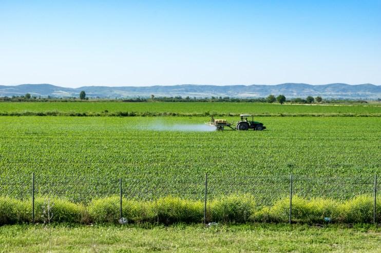 fungicide program