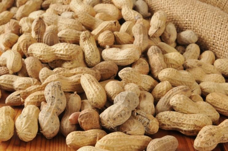 slight peanut supply