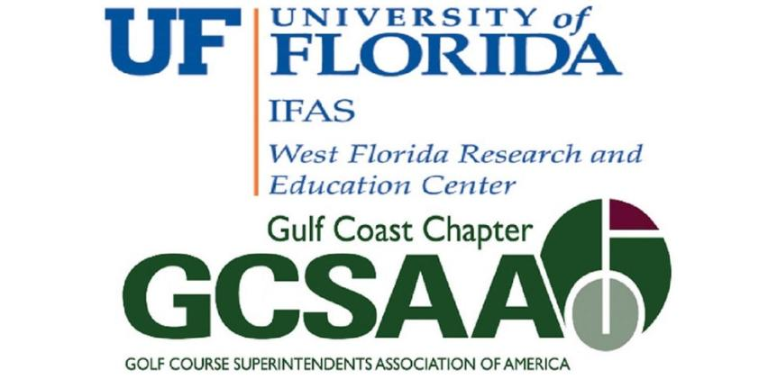 gulf coast turfgrass