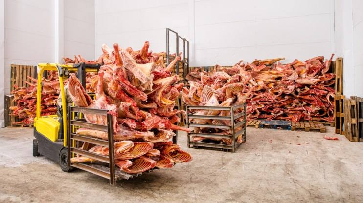 red meat exports